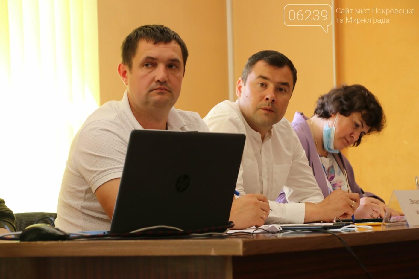 Вопросы благоустройства города и местного бюджета: в Мирнограде состоялась сессия городского совета, фото-11