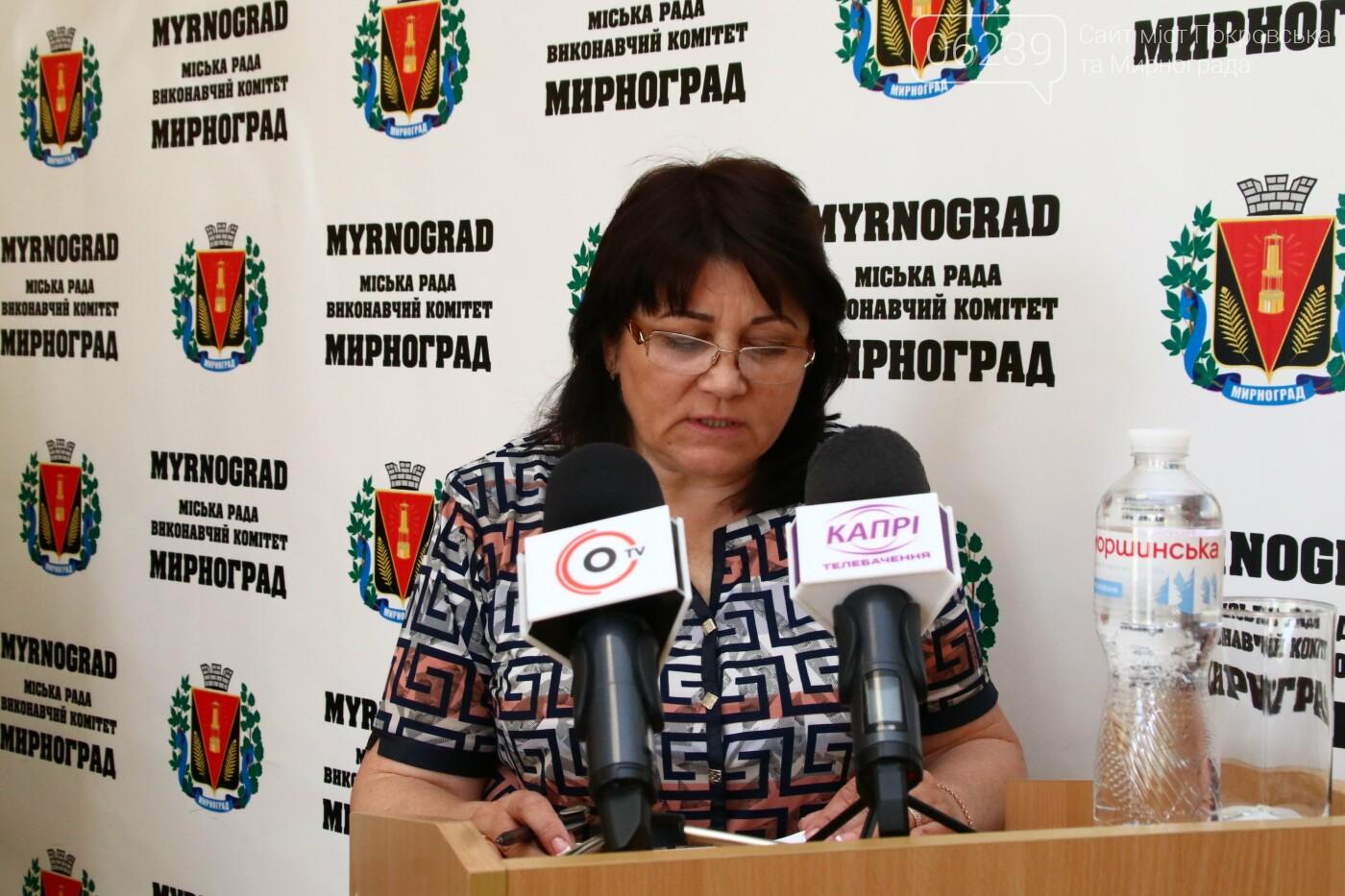 Вопросы благоустройства города и местного бюджета: в Мирнограде состоялась сессия городского совета, фото-12