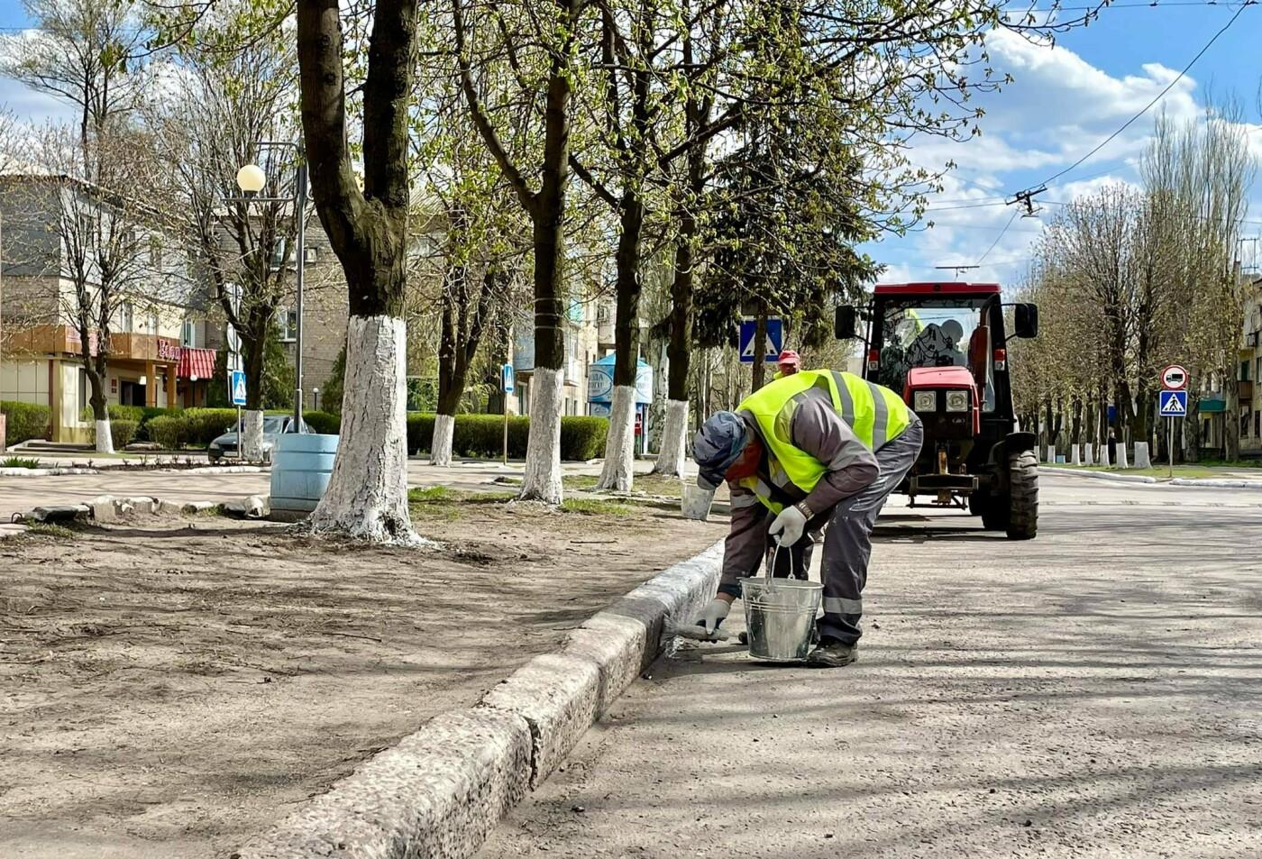 Покровские коммунальщики активно белят бордюры и деревья, - ФОТОФАКТ, фото-1