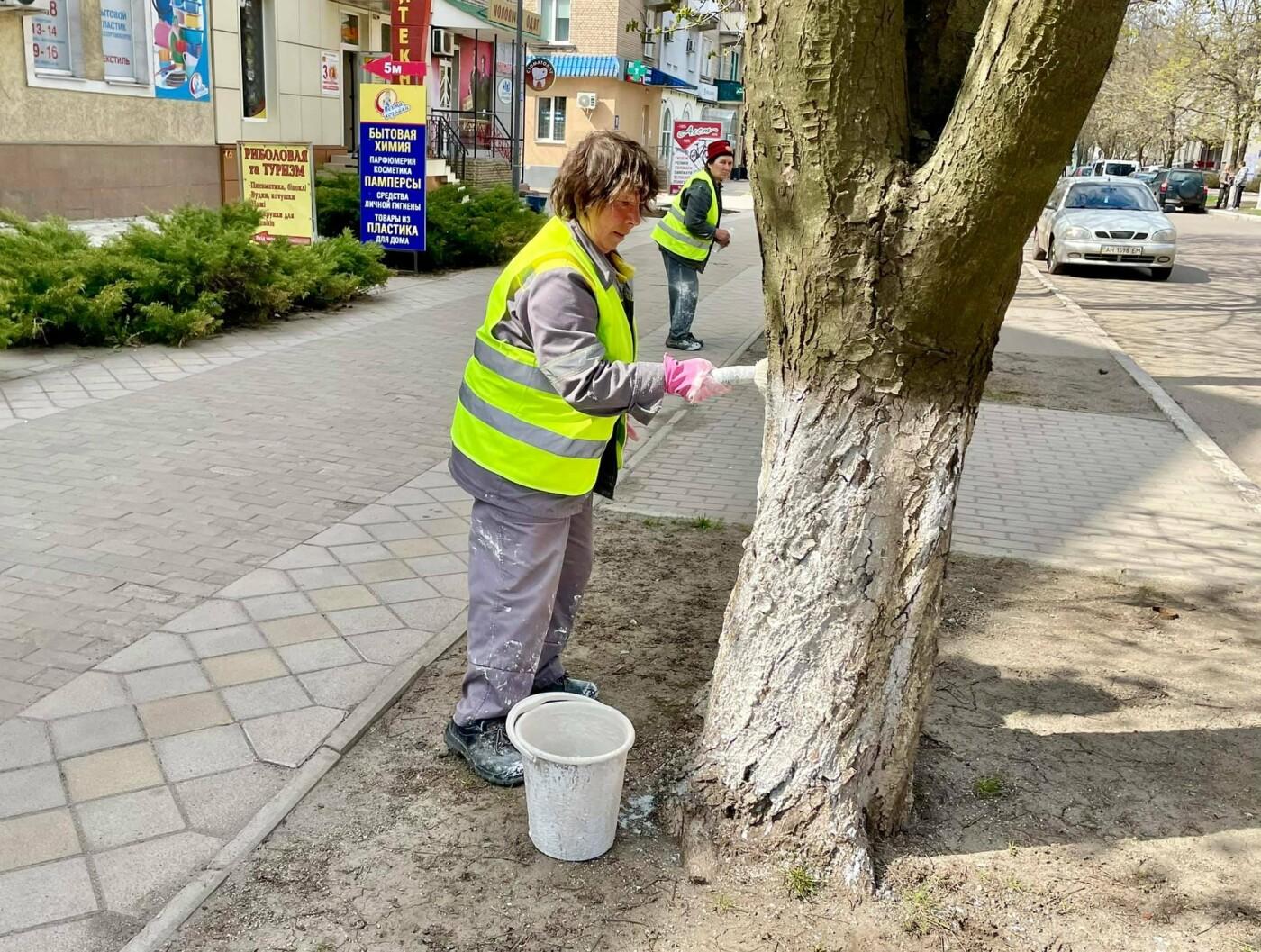 Покровские коммунальщики активно белят бордюры и деревья, - ФОТОФАКТ, фото-2