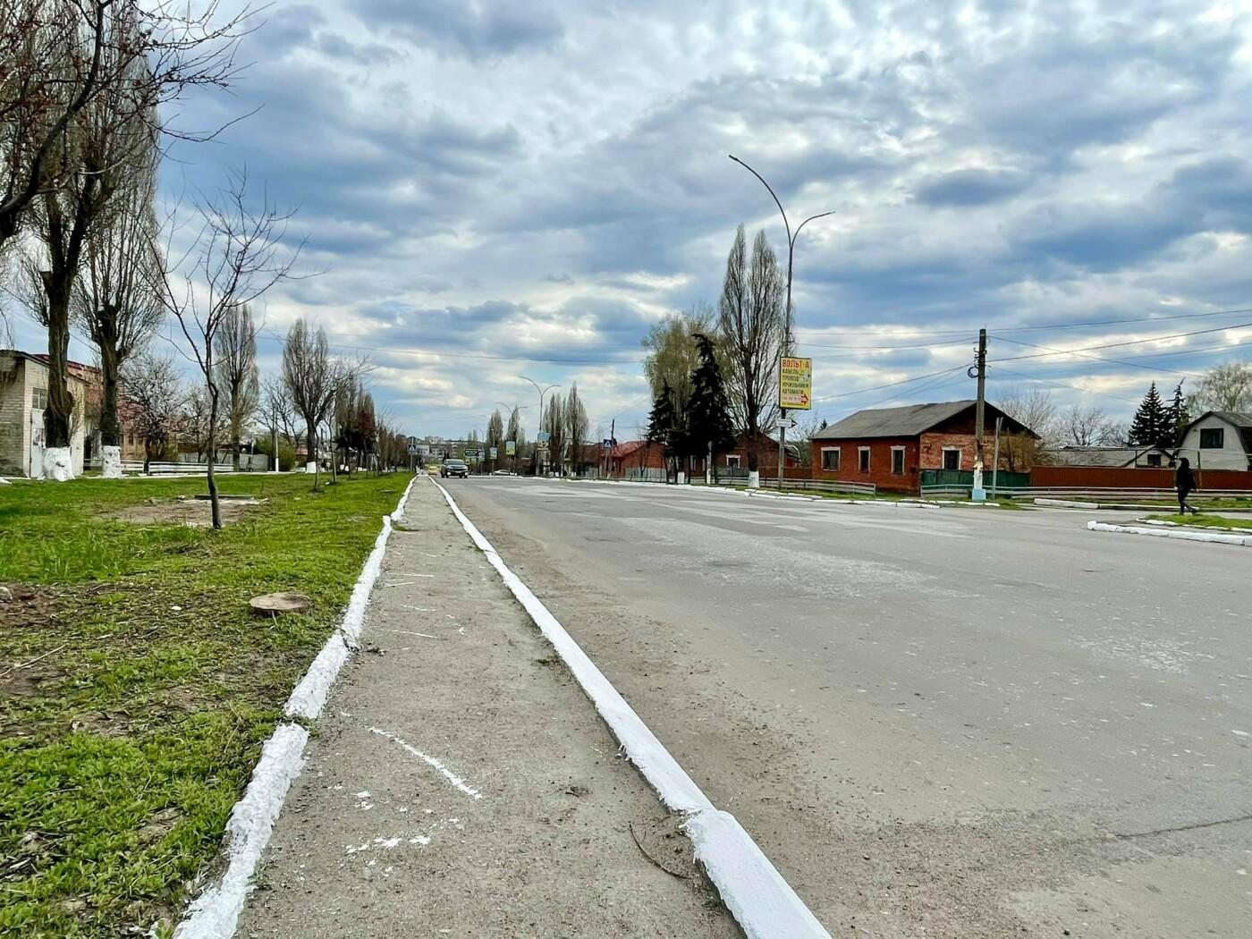 Покровские коммунальщики активно белят бордюры и деревья, - ФОТОФАКТ, фото-5
